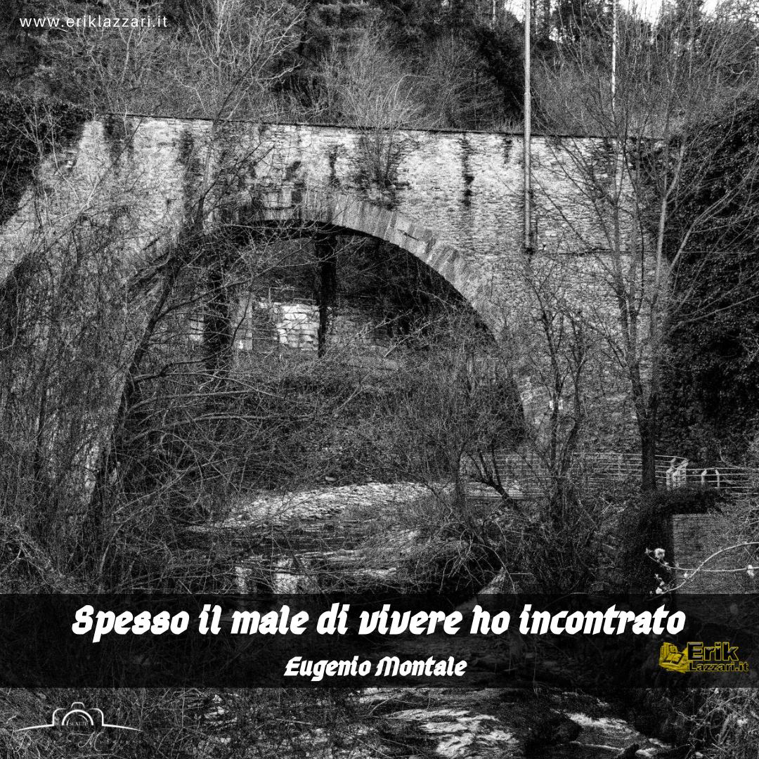 """""""Spesso il male di vivere ho incontrato"""" di Eugenio Montale"""
